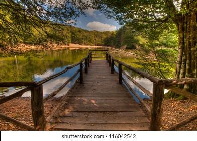 Pier over a lake in Foresta Umbra (Umbra Forest) in Gargano National Park, Puglia, Italy