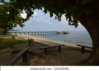 Pier to Sumilon Island Cebu Philippines, in a tranquil scene under a big tree gives shadow to travelers while wating for the boat ride to the island resort