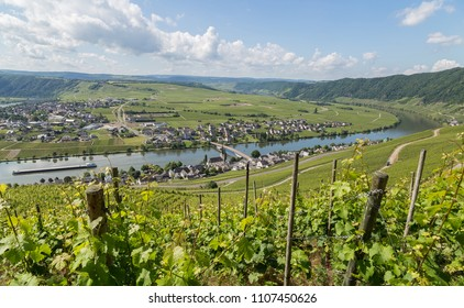 Piesport Panorama on the Moselle Germany.
