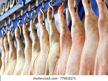 Pig carcasses cut in half stored in refrigerator room of food processing plant.