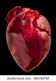 Pig heart on a black background