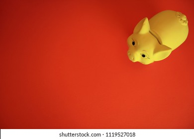 The pig is a symbol of the year 2019 in the Chinese calendar. Yellow pig piggy Bank on red background.  Copy space for text.