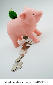 Pig turns green leaf into coins