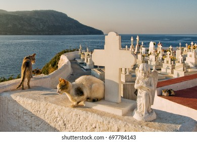 PIGADIA , KARPATHOS GREECE  cemetery on the height of the city of Pigadia