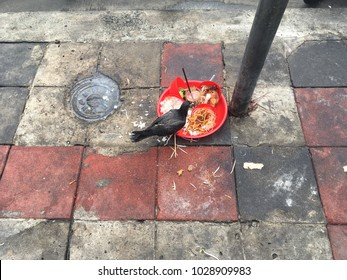 Pigeons are eating rice that is used for sacrifices placed on the street. People often believe that ghosts will bring good fortune if not hunger.