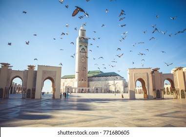 The pigeons soared over the area of the mosque Hassan II in Casablanca, Morocco.
