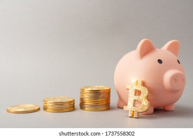 Piggy bank for bitcoins. Bitcoin accumulation concept. Cryptocurrency saving symbol. Money box on a gray background. Copy space.