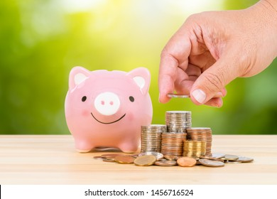 Piggy bank, coin stack, with hand putting money on the pile, on green tree background, saving concept