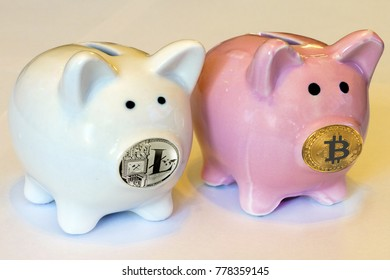 Piggy Bank with coins bitcon and litecoin is the nose. Hoard of the cryptocurrency. To invest in cryptocurrencies.