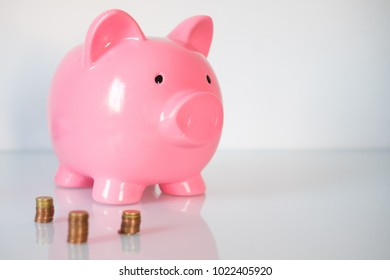 Piggy bank with finance sheet and money currency savings concept