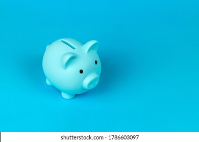 piggy bank in the form of a pig on a blue background