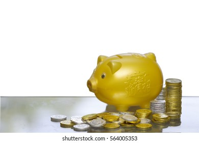 A piggy bank with golden coin and silver coin  money, savings.Chinese language on piggy is gold and money Ood.