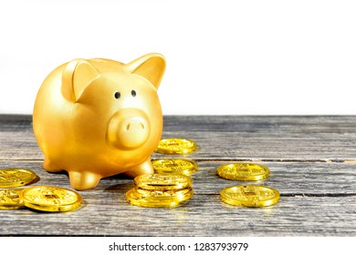 Piggy bank and golden coins on the wooden table. Chinese New Year. Year of the earth pig