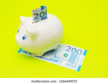 Piggy bank isolated on the green background