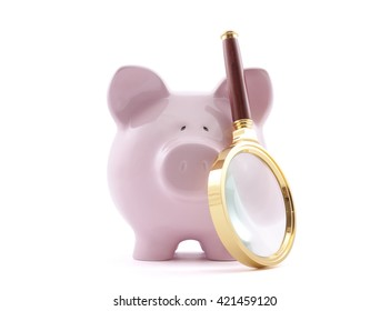 Piggy bank with magnifying glass. Clipping path included.