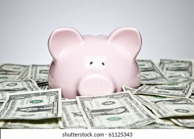 Piggy bank placed up to its nose in a pile of dollars