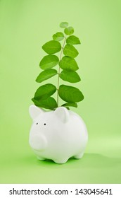 Piggy bank with plant growing from coin slot symbol of capital growth or good investment