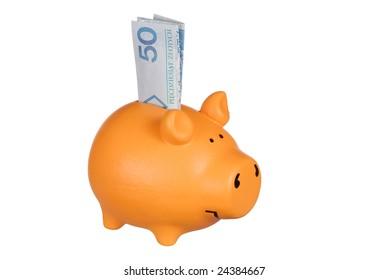 Piggy bank and Polish money on white background