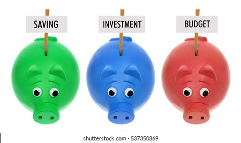 Piggy Bank with Sign Board on White Background