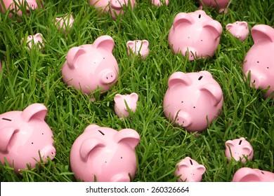Piggy banks on grass