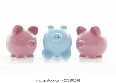 Piggy banks on white - creativity, unusual, stand out from the crowd