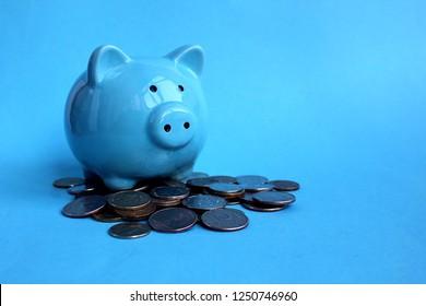 piggy blue piggy standing on a pile of money coins