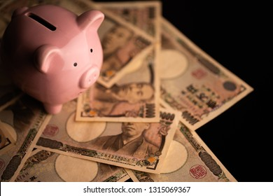 Pig's piggy bank and image of money