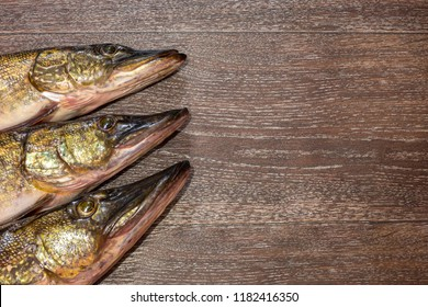 pike fish heads on wooden background with space for text