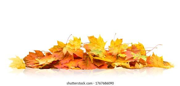 Haufen von Herbstblättern einzeln auf weißem Hintergrund