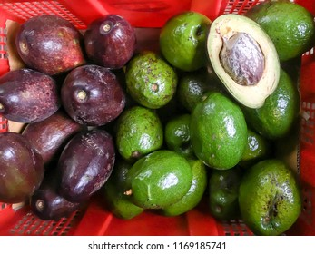 Pile of avocado fruit for sale in market., Pile of fresh ripe avocados in orange basket.