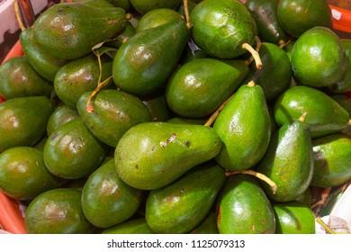 Pile of Avocado under Sunshine in Basket in Thailand