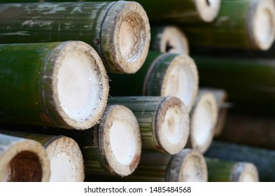 Pile of bamboo background.Cut bamboo for sale