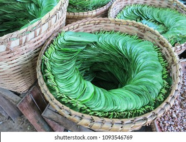 A pile of betel leaf in a basket.
