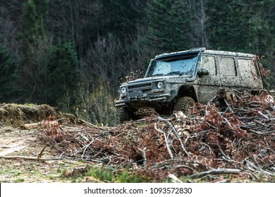 Pile of branches in front of car. Dirty offroad car with dark forest on background, defocused. SUV after offroad expedition. Extreme entertainment concept.