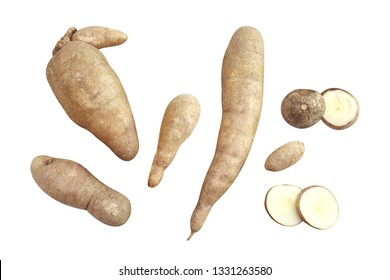 pile cassava isolated on white background, cassava for tapioca flour industry or ethanol industry, raw yucca cassava tuber, raw manioc cassava in top view