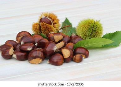 A pile of chestnuts, leaves and burrs on a white wooden table