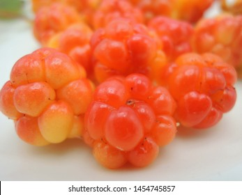 Pile of cloudberries (Rubus Chamaemorus) picked up in Finland
