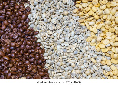 pile of Coffee Beans, three kind of coffee bean. Dark, Medium, Light Roast. coffee and barista business concept.