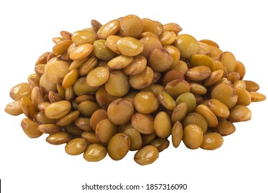 Pile of cooked lentils (Lens culinaris seeds) isolated
