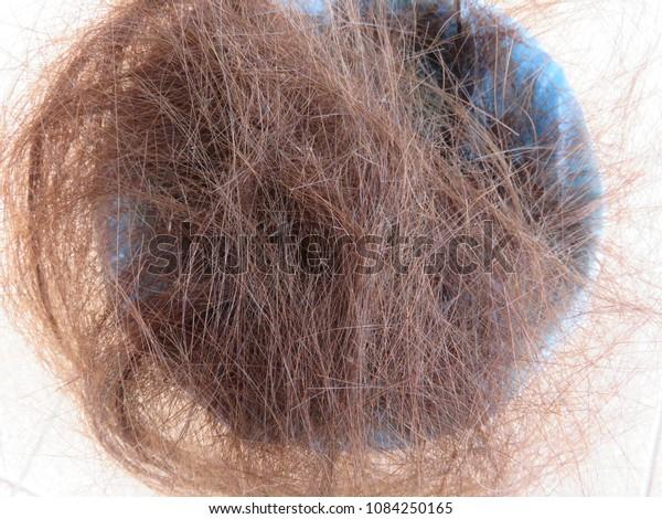 Pile Cut Hairs Bin Haircut Usually Stock Image
