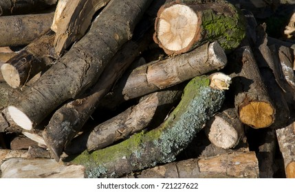A pile of cut logs ready for fire wood