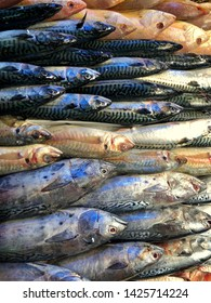 Pile of different fresh fish for sale on the fishmonger, outdoor seafood market.