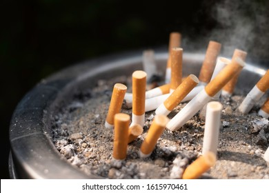 Pile of discarded cigarette butts on trash can with smoke. The cigarettes /tobacco scraps can harm smokers & are toxic plastic pollution. Discarded cigarette butts and lung cancer concept.