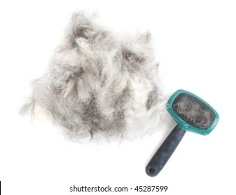 A pile of dog hair (German Shepherd) with a slicker brush.