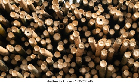 Pile of Dried Bamboo Stock