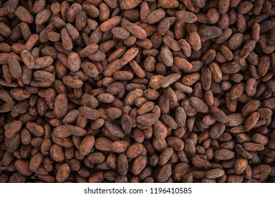 A pile of dried cocoa beans in Peru.