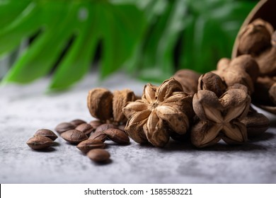 A pile of dried Sacha Inchi nuts. Natural background in lighting studio. Healthcare food concept.