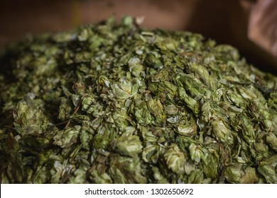 A pile of dry hops for beer brewing