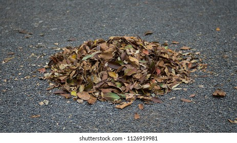 A pile of dry leaves on the small stone pebble ground. Leaves swept into a heap on the road in the park.