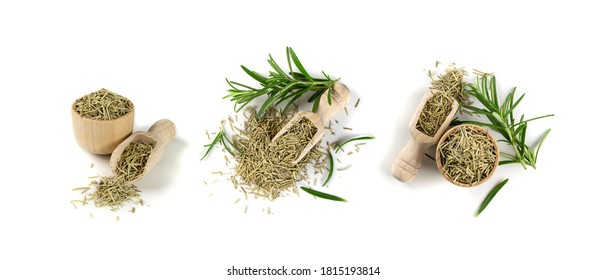 Pile of dry rosemary needles in scoop isolated on white background. Dried crushed and fresh green rosemary leaves. Ground seasoning, herbs and spices close up